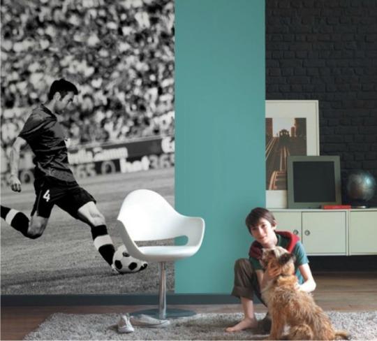 Fotomural ideal para una decoración de fútbol
